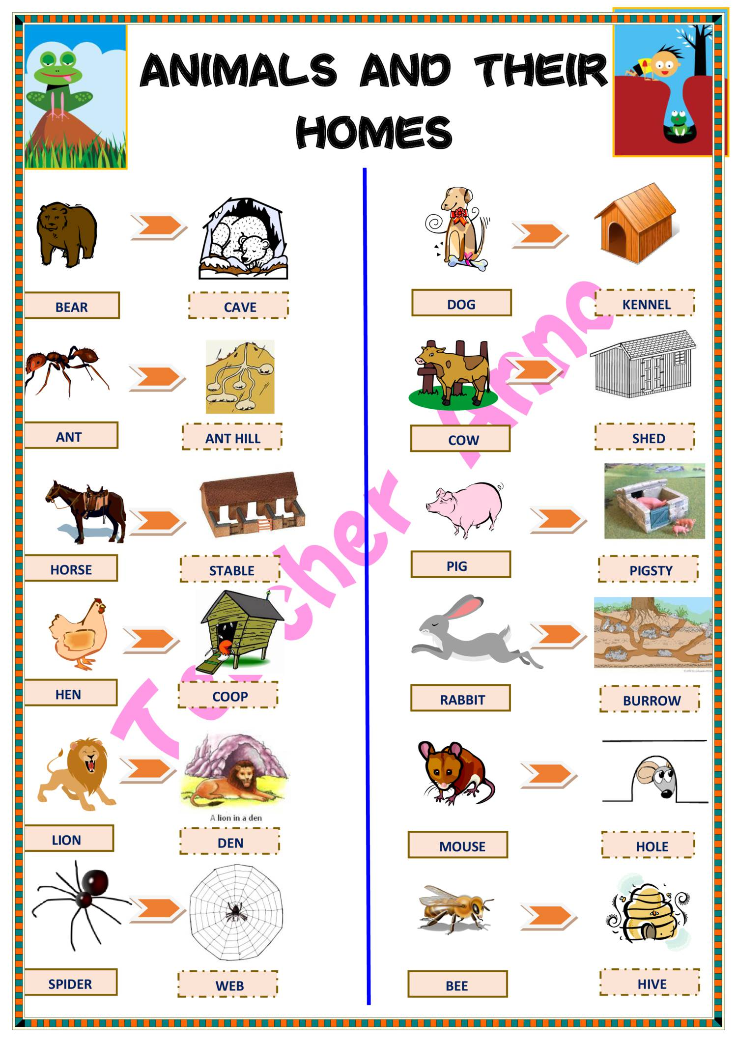 Animals And Their Home pdf | DocDroid