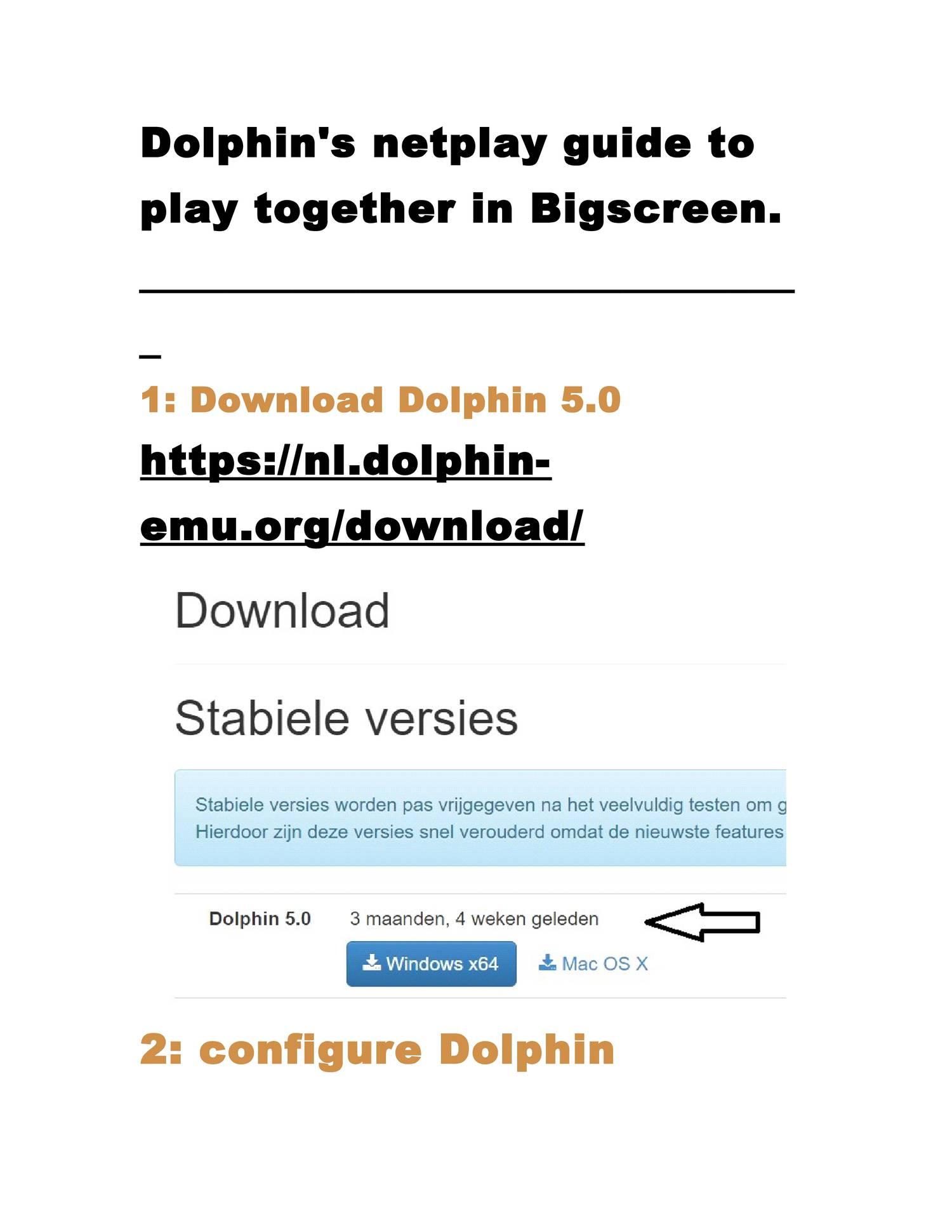 Dolphin Netplay Desync