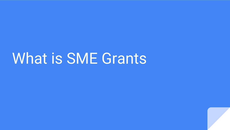 What is SME Grants.pdf