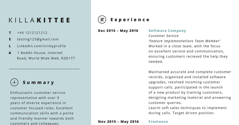 Fake resume pdf