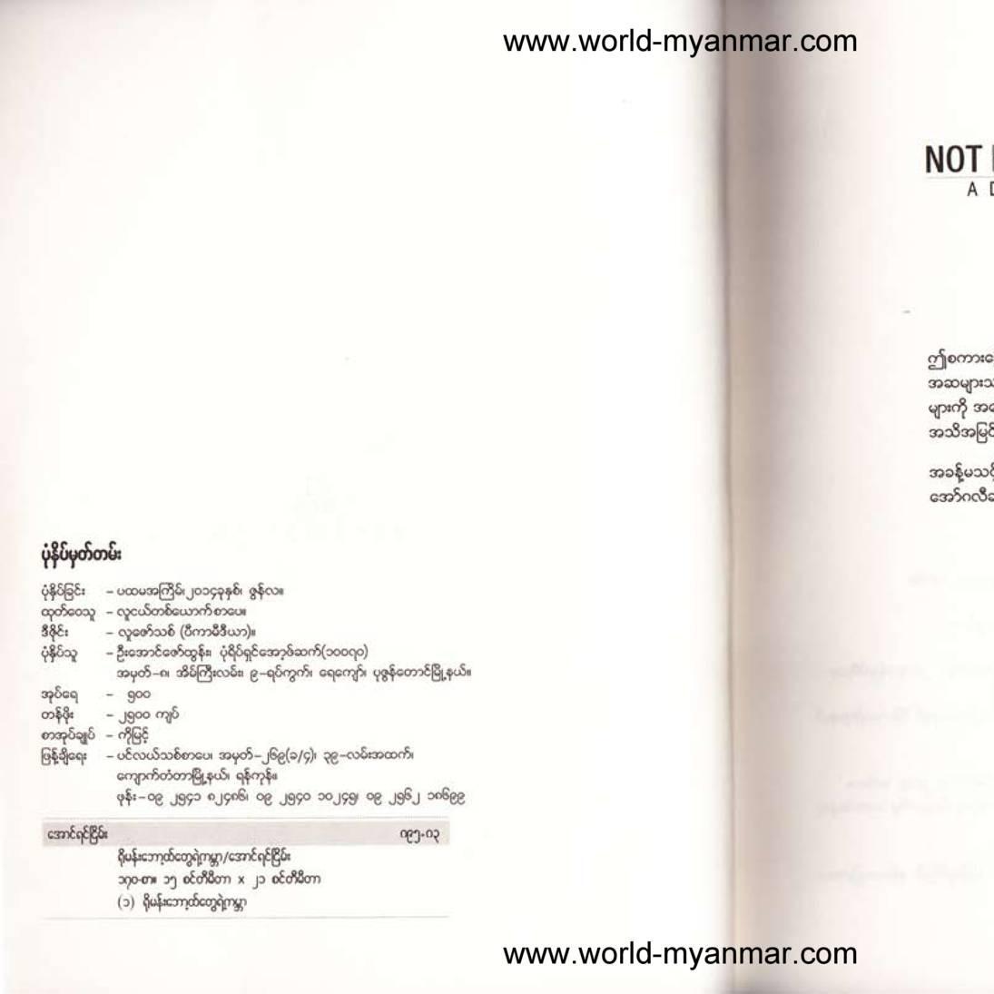 Aung Yin Nyein Book