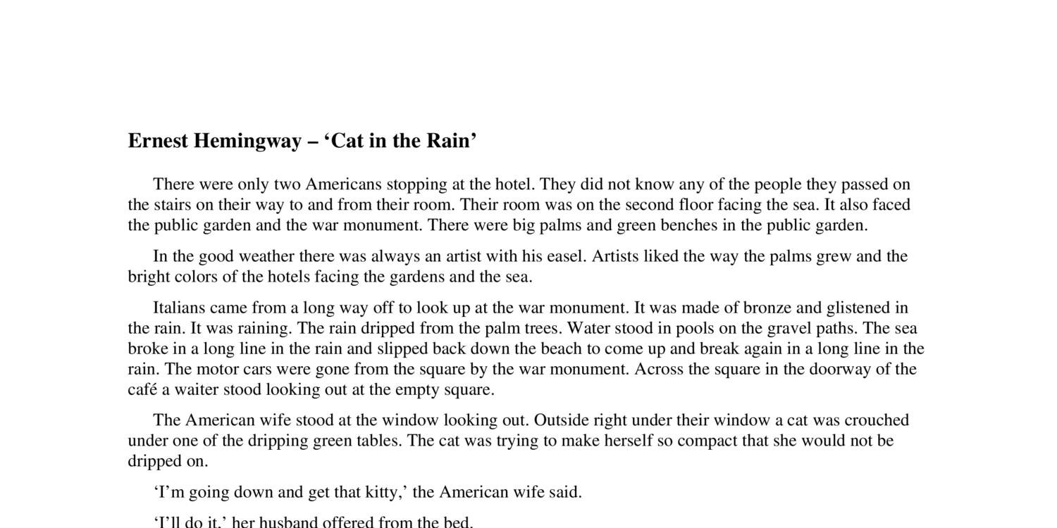 cat in the rain by ernest hemingway 2 essay