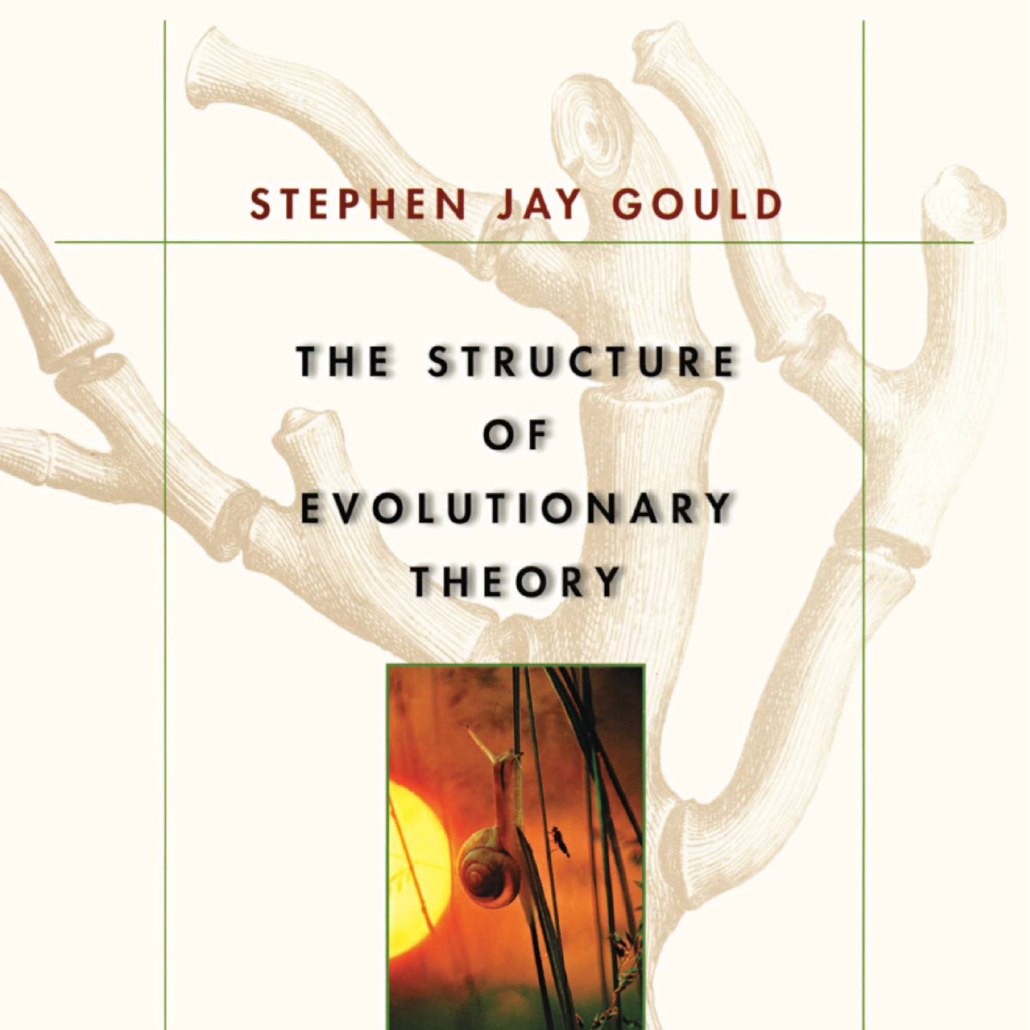 the concept of non overlapping magisteria in noma defined and defended by stephen jay gould The philosopher ludwigs wittegenstein's concept of model of non-overlapping magisteria (noma the relationship between science and religion.